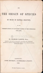 Title page from Darwin's 'The Origin of Species'  1859.