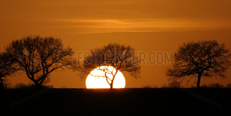 Sunset  2007.