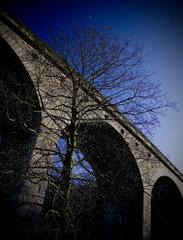 Arthington Viaduct  near Leeds  West Yorkshire  2007.