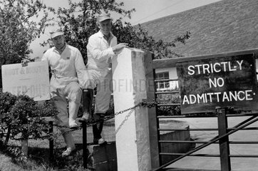 Stockmen happy to see the end of foot and mouth infestation  14 June 1968.