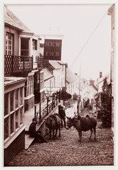 'Clovelly  The New Inn'  c 1880.