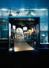 Entrance to the Health Matters gallery  Science Museum  London  1990s.