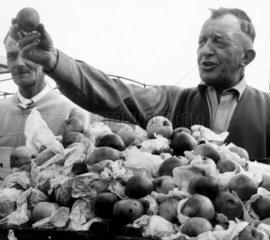 Man selling apples  Barnsley market  1960.