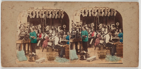 Stereo image by Marc Antoine Gaudin c  1860.