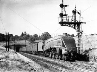 'Silver Fox' steam locomotive No 17 with
