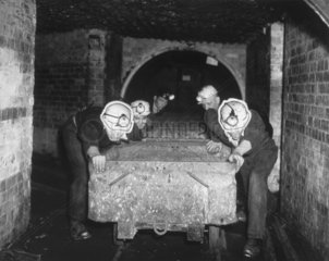 Trainee miners pushing wagons  1 July 1954.