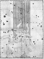The constellation Taurus  1603.