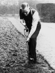 World War I pensioner digging with a prosthetic arm  6 May 1942.