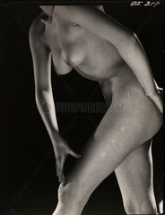 Female nude  1960s.