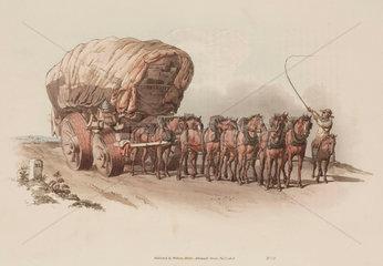 'Waggon'  1808.