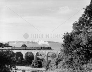 Churston Viaduct  c 1959. The 41xx class 2-