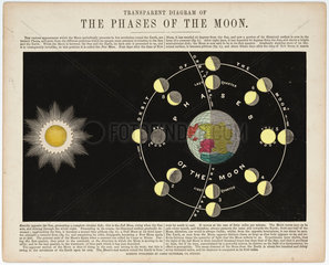 'The Phases of the Moon'  c 1860.