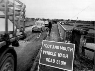 Foot and mouth vehicle wash area  27 November 1967.