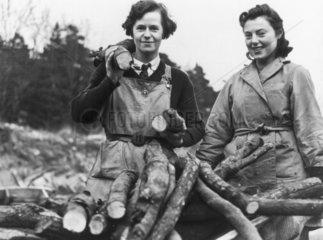 Forestry landgirls  2 January 1940.