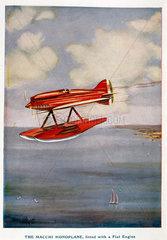 Macchi monoplane  Schneider Trophy contest  September 1929.