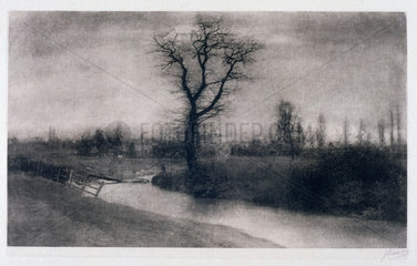 'Winter landscape: solitary tree by a bend