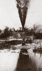 Oil gusher at Potrero  Mexico  c 1910-1914.