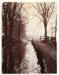 Tree-lined river  c 1898.