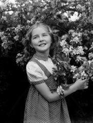 Little girl by a flowering tree  1949.