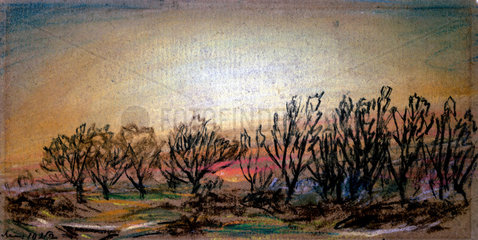 Afterglow following sunset  10 May 1884.