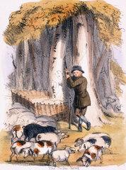 'The Swine Herd'  c 1845.