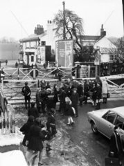 Schoolchildren waiting at level crossing  Maghull Station  Liverpool  March 1970.