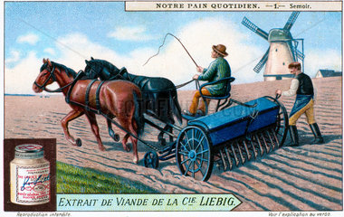 Sowing seeds  Liebig trade card  c 1870-1920.