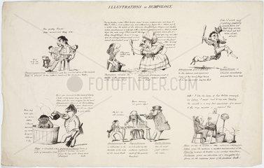 'Illustrations of Bumpology'  1805-1830.