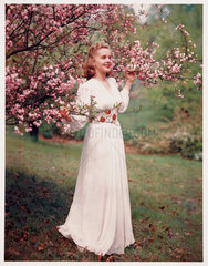 Woman modelling a dress near blossom  c 1940s.
