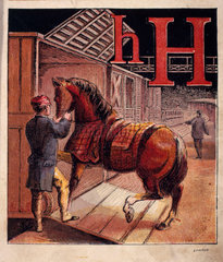 A horse being led into a railway box carria