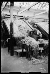 Mill worker processing jute  Scotland  1932.