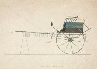 High two-wheeled dog cart  1816.