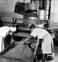 Workers removing tea from a roller  prior t