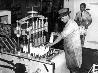 Taking bottled milk off a machine at a dair