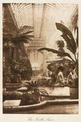 Fountain and exotic plants  north nave  Crystal Palace  London  1911.