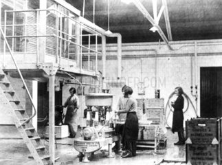Bottling milk at the dairy  c 1930s. 'Consi