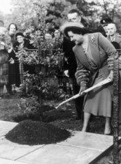 Queen Elizabeth  27 October 1953.
