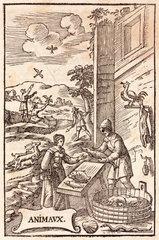 Woman buying fish  1657.