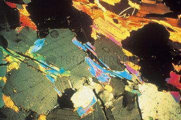 Sandstone  light micrograph  1990s.
