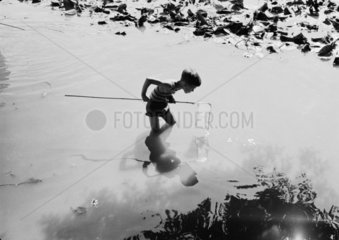 Young boy fishing with a net in a pond  c.1930s.