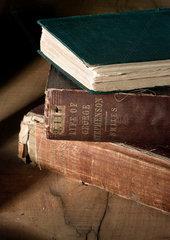 Biographies of George Stephenson  English railway engineer  19th century.