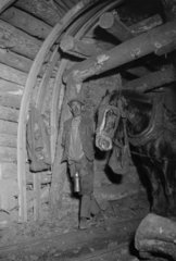 Miner with pit pony  South Wales  1931.