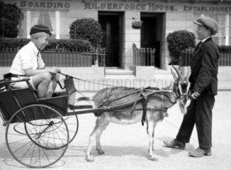 Boy in a goat-cart  c 1930s.