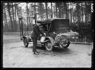 Disinfecting car wheels during a foot and mouth outbreak  Whipsnade Zoo  1935.
