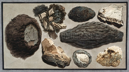 Volcanic material from Mount Vesuvius  1779.