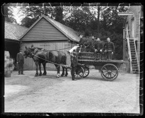 'Halstead Fire Brigade'  c 1900
