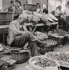 A Greek orange-seller asleep by his market stall  18 June 1946.