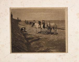 'Ring Horses'  1898.