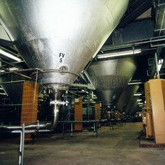 Internal shot of a fermenter.
