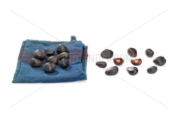 Palm nuts with cloth bag  Nigeria  1880-1920.
